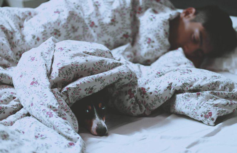 SR how much sleep you need