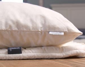 Shop - Naturepedic 2-in-1 pillow